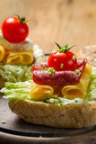 Sandwich with salami, tomato, chive and lettuce Stock Photography