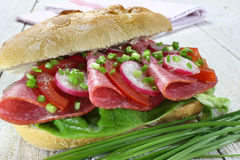 Sandwich with salami. Tomato, lettuce and radish royalty free stock images