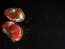 Sandwich with salmon and cream cheese. On a piece of rye multi-grain bread. Stock Photography