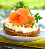 Sandwich With salmon fillet. Stock Photos