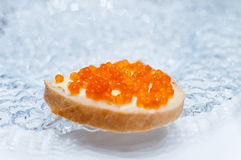 Sandwich with salmon red caviar on a glass plate Royalty Free Stock Photography