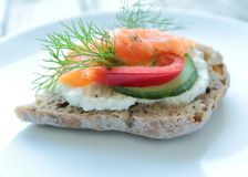 Sandwich with salmon Royalty Free Stock Photos