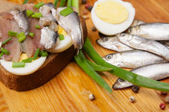 Sandwich from salted anchovies with egg and spring onion Royalty Free Stock Photos