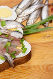 Sandwich from salted anchovies with egg and spring onion Royalty Free Stock Photo