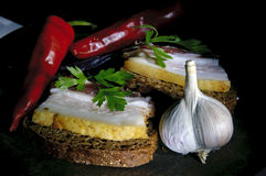 Sandwich with salted lard, garlic and pepper Stock Photography