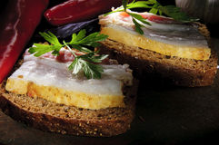 Sandwich with salted lard, garlic and pepper Royalty Free Stock Photography
