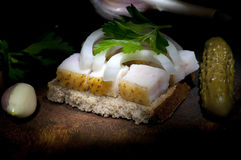 Sandwich with salted lard Stock Images