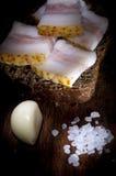 Sandwich with salted lard Stock Photos