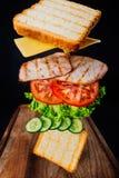 Sandwich savoureux Photo libre de droits