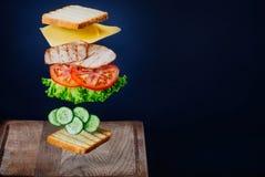 Sandwich savoureux Images libres de droits
