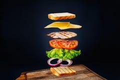 Sandwich savoureux Photos libres de droits