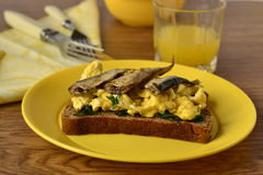 sandwich - scrambled eggs with sprats on rye bread Stock Images
