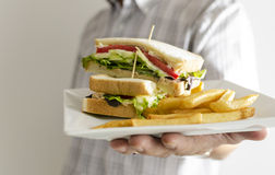 Sandwich. Serving tuna sandwich and  French fries Royalty Free Stock Photography