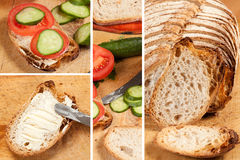 Sandwich. A set of photos from the preparation of sandwiches Stock Image