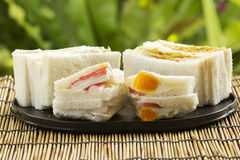 Sandwich set on the tray Royalty Free Stock Images