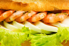 Sandwich with shrimps Royalty Free Stock Image