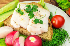 Sandwich with slice of rye bread, fresh pork lard and parsley in the plate, fresh produce, vegetables, close-up. Royalty Free Stock Photo