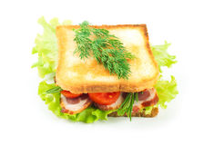 Sandwich from smoked meat Stock Image
