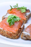 Sandwich with smoked salmon Royalty Free Stock Photography
