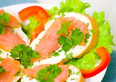 Sandwich with smoked salmon Royalty Free Stock Photos