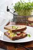 Sandwich with smoked salmon, radishes and egg Royalty Free Stock Photos