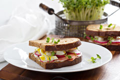 Sandwich with smoked salmon, radishes and egg Stock Photos