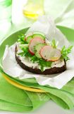 Sandwich with soft cheese ,radish and cucumber Royalty Free Stock Photo