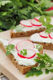 Sandwich with soft cheese, radish and parsley. Healthy sandwich with soft cheese, radish and parsley Stock Image