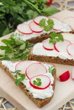 Sandwich with soft cheese, radish and parsley. Healthy sandwich with soft cheese, radish and parsley Royalty Free Stock Images