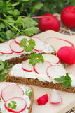Sandwich with soft cheese, radish and parsley. Healthy sandwich with soft cheese, radish and parsley Royalty Free Stock Photo
