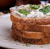Sandwich with soft cheese. And spinach surrounded composition of quail eggs red pepper and walnuts royalty free stock image