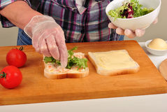 sandwich with some organic green salad Royalty Free Stock Photos