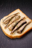 Sandwich with sprats Royalty Free Stock Photography