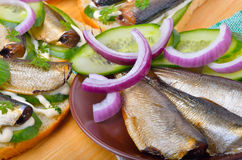Sandwich with sprats and green cucumber Royalty Free Stock Photo