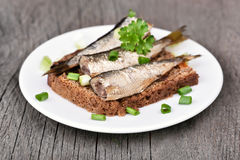 Sandwich with sprats and green onion Stock Images