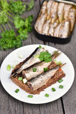 Sandwich with sprats Royalty Free Stock Images
