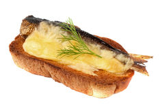 Sandwich with sprats and grilled cheese Royalty Free Stock Photography