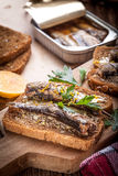 Sandwich with sprats. Royalty Free Stock Image