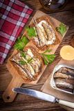 Sandwich with sprats. Stock Photos