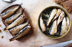 Sandwich with sprats Stock Photography