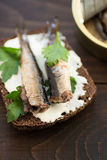 Sandwich with sprats Stock Photos