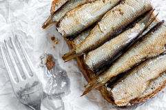 Sandwich with sprats top view Royalty Free Stock Photo