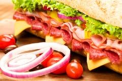 Sandwich submersible Photographie stock libre de droits