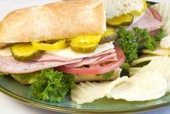 Sandwich submersible italien avec des puces Images stock