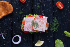 Sandwich surrounded by ingredients Stock Images