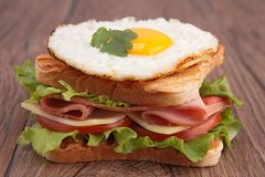 Sandwich toast Stock Images