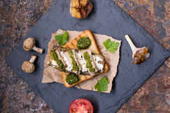 The sandwich of toast, cheese, mushrooms, grilled meat, zucchini and green sauce, feeding on the rock. Old rural Royalty Free Stock Photos