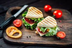 Sandwich toast grilled with cheese, salami,tomato and salad Stock Image
