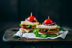 Sandwich toast grilled with cheese, salami,tomato and salad Royalty Free Stock Photography