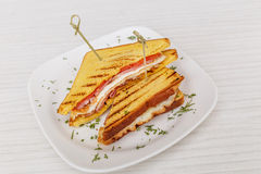 Sandwich toast grilled with cheese and tomatoes Stock Photography